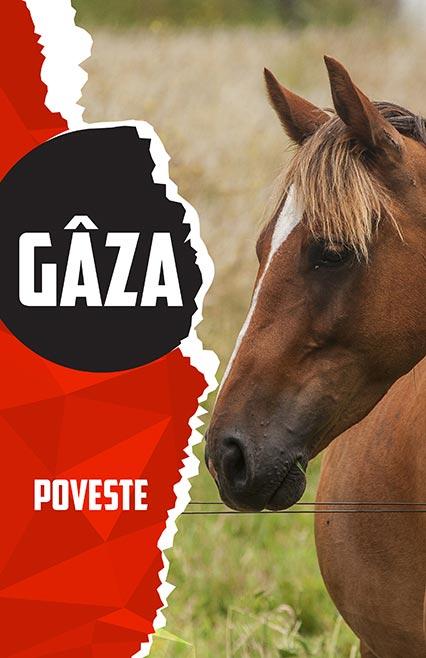 gaza-poveste-afis-etheatrum, povesti, teatru online