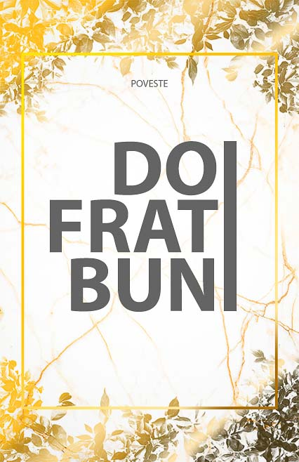 poveste doi frati buni e-theatrum